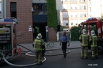 Brand in der Koloniestraße in wedding (6)