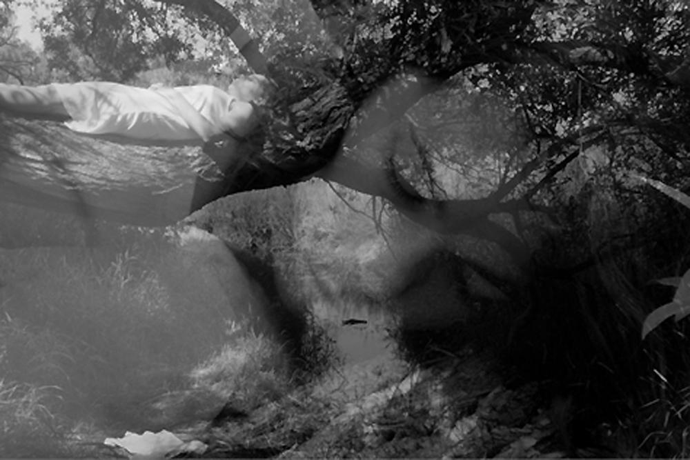 Quartett für Tagträumer Vinzenz Fengler Lesung