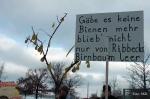 Demo wir haben es satt berlin 2013 (14)