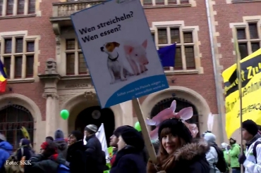 Demo wir haben es satt berlin 2013 (16)