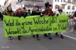 Demo wir haben es satt berlin 2013 (7)