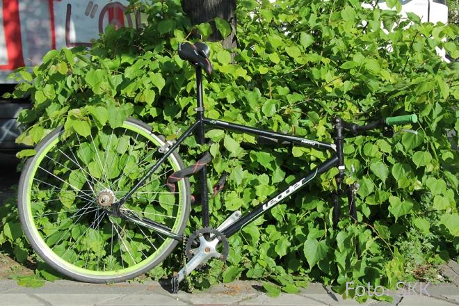 Fahrradleiche Prinzenallee (2)