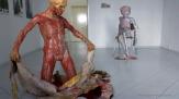 Galerie Toolbox soldiner Kiez Tanja Becher (7)
