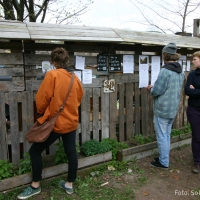 Gartenprojekt Himmelbeet in Wedding eröffnete mit Frühlingsfest die Saison 2016