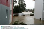 überschwemmung Inn Lankreis Rottal 2016 (5)