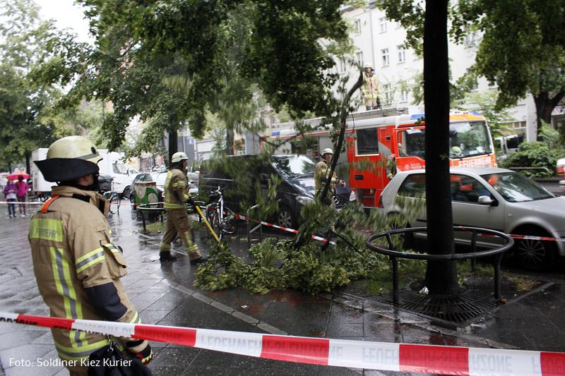 Feuerwehr entfernt morschen Ast in Prinzenallee   (3)