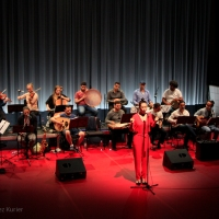 Arabic-English -Diva: Celebrating Oum Kalthoum by The Wedding Orchestra for Middle Eastern Music