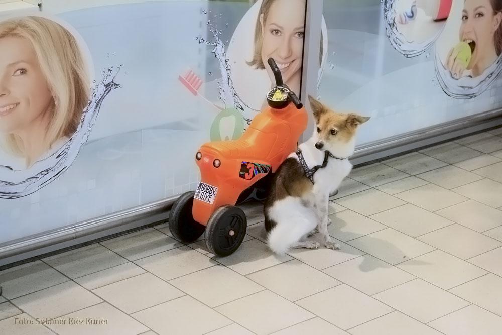 bobby-bike-bewacht
