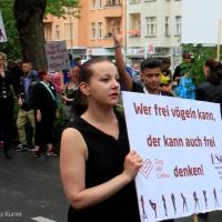 Zug der Liebe Berlin 2017 - die Videoreportage