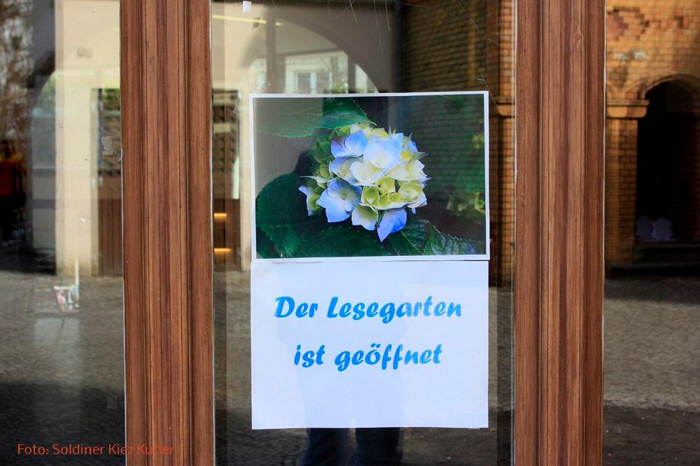 Lesegarten Bibliothek Luisenbad
