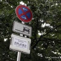Baumfällungen Gotenburger Straße
