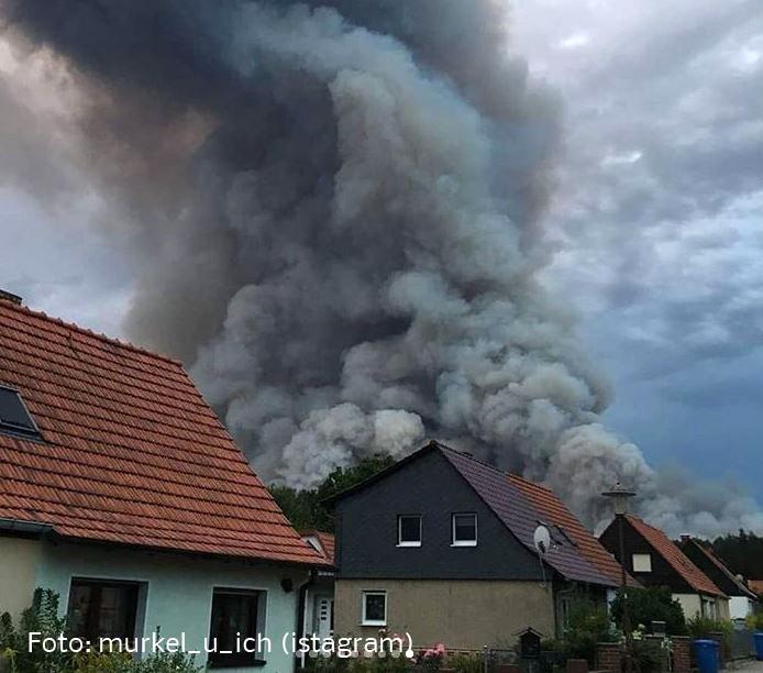 Waldbrand Treuenbrietzen Brandenburg