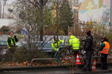 neue bäume prinzenallee (3)