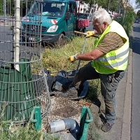 Sensoren für die Straßenbäume