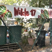 """Die """"Wilde 17"""" feiert Erntedank und stellt sich zur Wahl"""