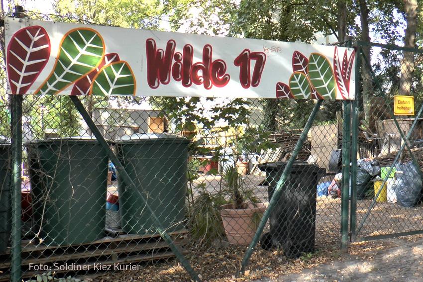 Wilde 17 1